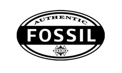 4 FOSSIL